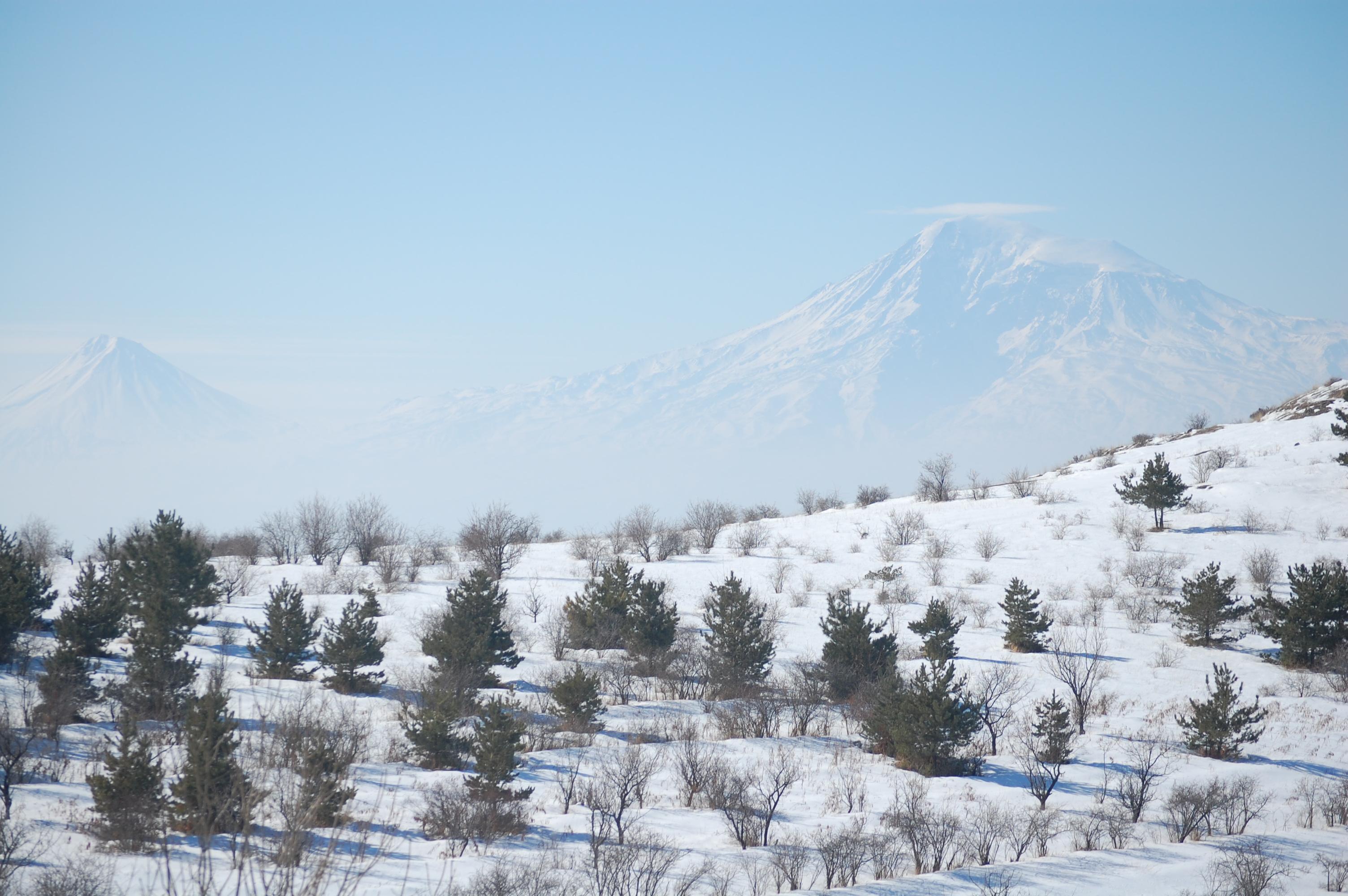 ararat-winter