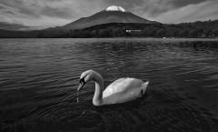 swan-volcano-japan