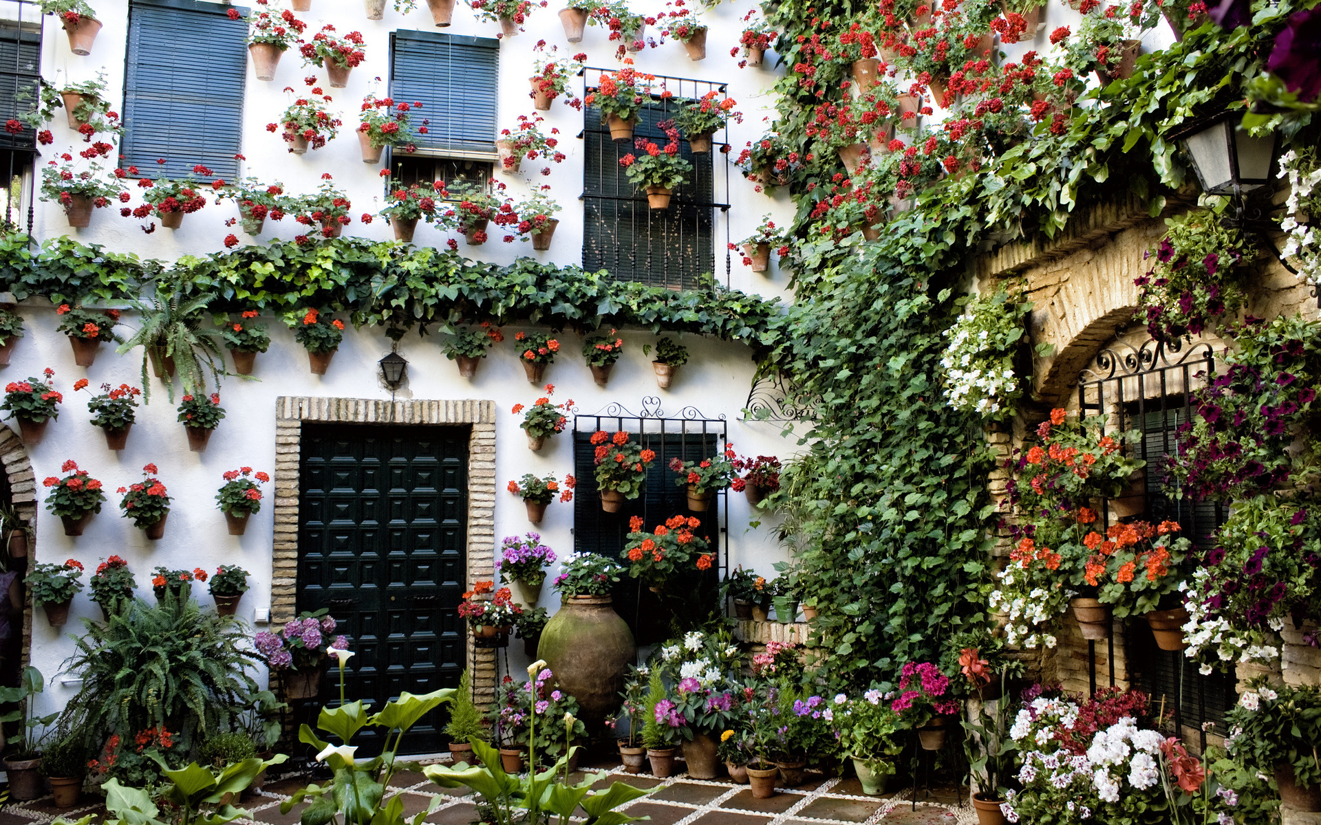 cordoba-andalusia-spain-houses-of-cordoba
