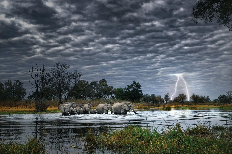 Africa-Photography-Alex-Bernasconi-sloni-peresekaut-reku