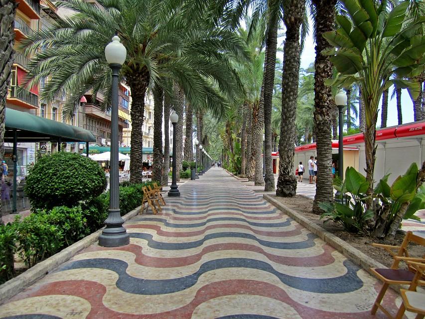 Alicante.тропинка-с-пальмами