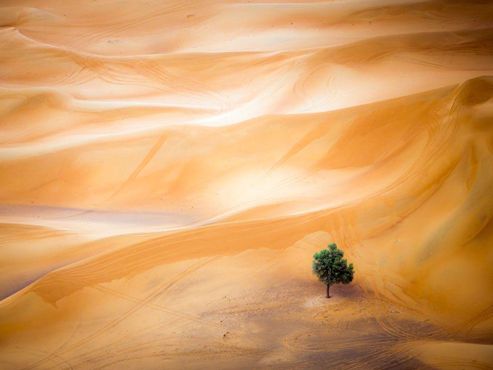 Пустыня-Дубай-National_Geographic