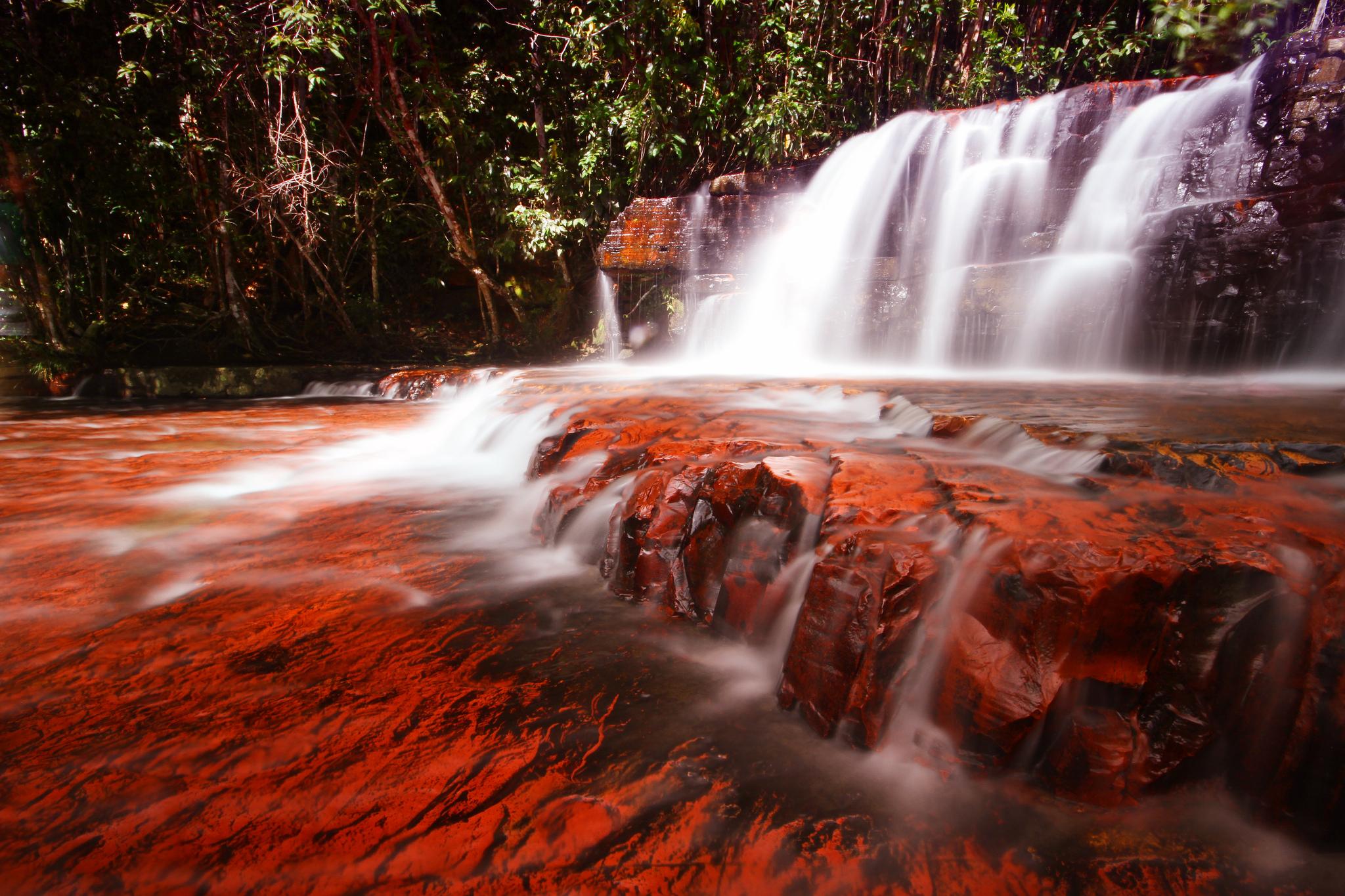 Parque-Nacional-Canaima-Канайма_Национальный_парк_Венесуэла.4