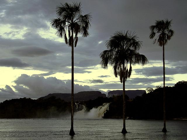 Parque-Nacional-Canaima-Канайма_Национальный_парк_Венесуэла.jpg2