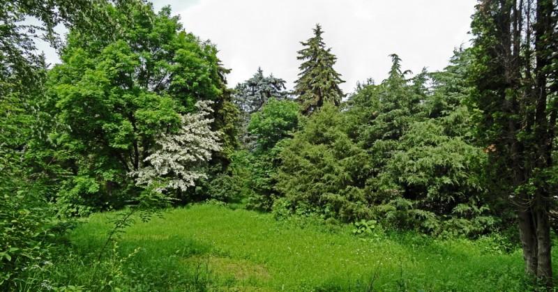 Ботанический_сад_Иджеван_Армения