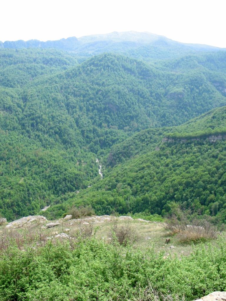 горы_покрытые_лесами_Иджеван_Армения_красивейшая_природа