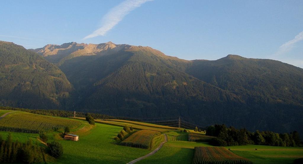Австрия_красивый_пейзаж_горы_зеленая_долина_поля