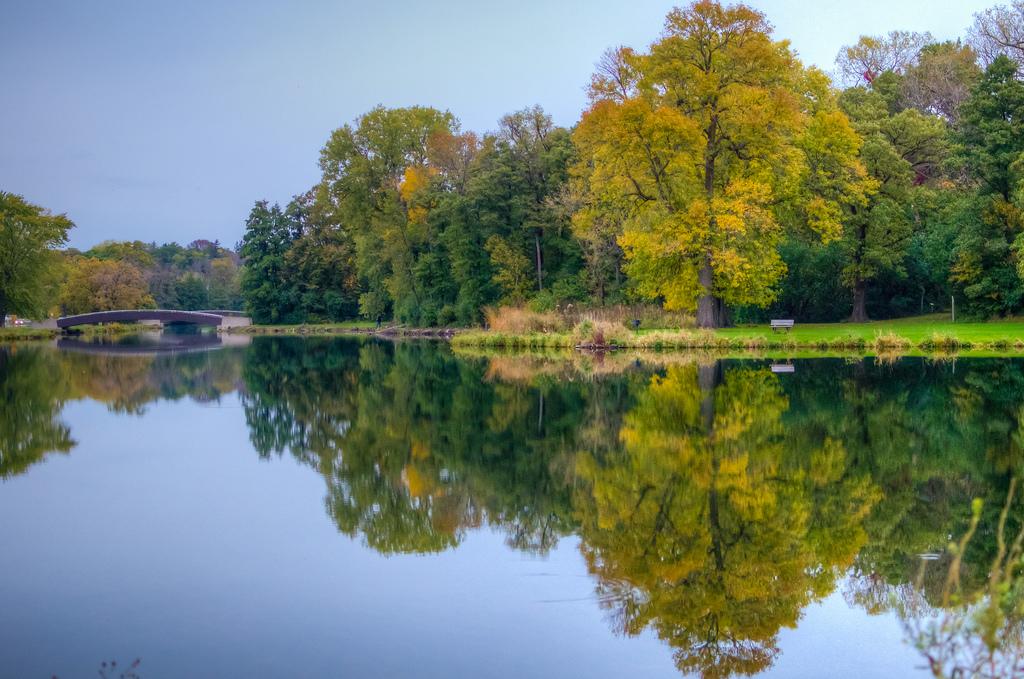 Lake_Geneva_night_озеро_Альп_женевское_озеро1