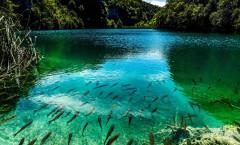 plitvice-lakes-national-park-horvatia