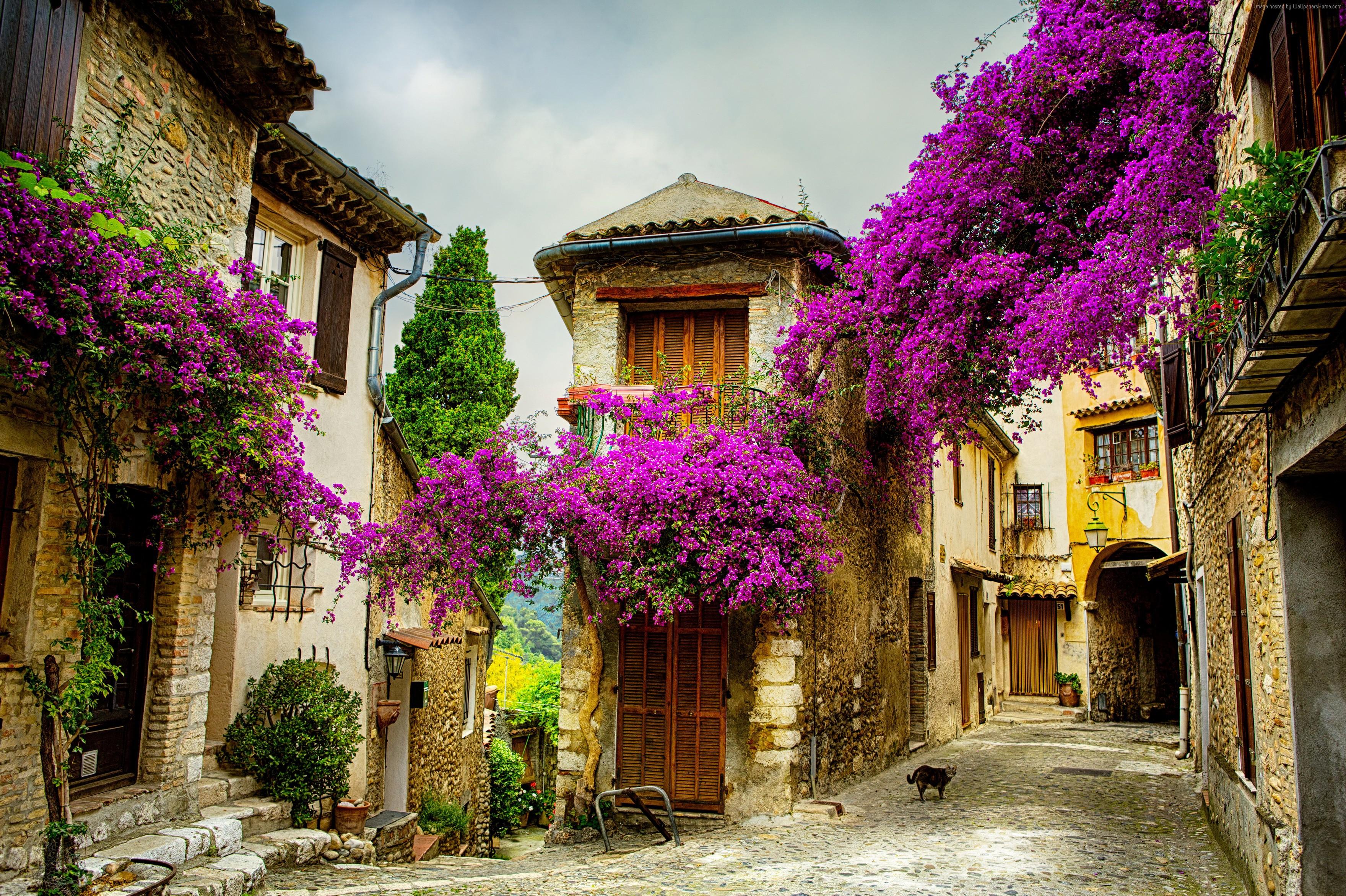 provans-franciya-turizm