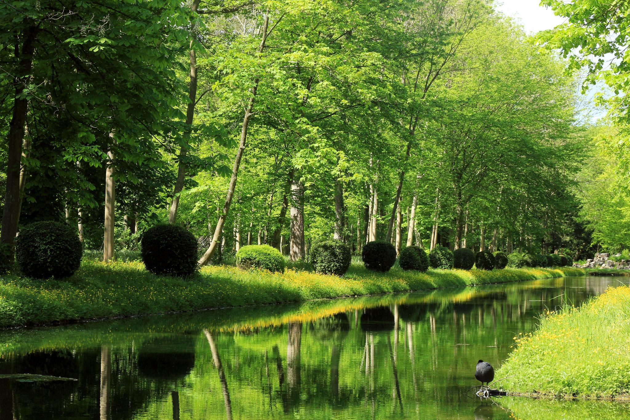 Китайский_сад_замка_Шантийи_chinese_garden