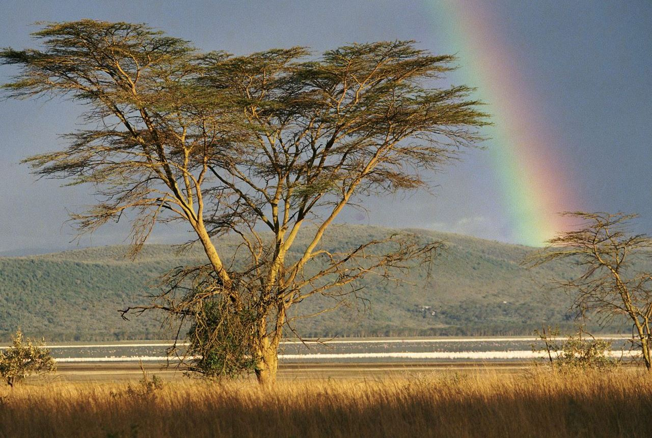 rainbow-over-the-savannah--lake-nakuru-national-park--kenya